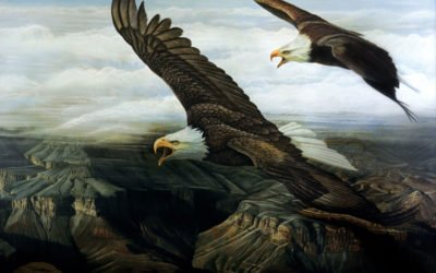 Read an excerpt from A Dearth of Eagles